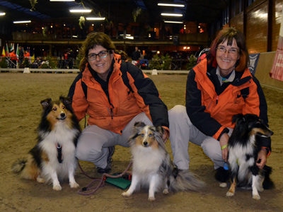 201310 Sheltie equip Canic