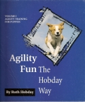 Agility_fun_vol1_i